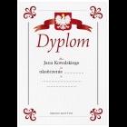 Dyplom szkoleniowy uniwersalny wz.1