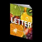 Broszura LETTER, 8-stronicowa, kolor