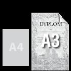 Dyplom A3, kolor jednostronnie
