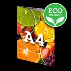 ECO Folder A4, 12-stronicowy