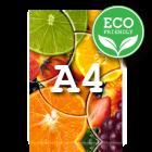 ECO Katalog A4, 80-stron