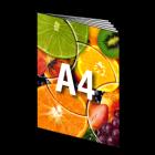 Folder A4, 12-stronicowy, kolor