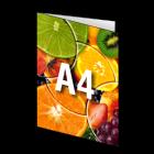 Folder A4, 4-stronicowy, kolor