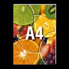 Katalog A4, 80-stron, kolor