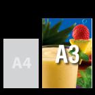 Plakat A3, kolor
