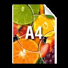Plakat A4, kolor