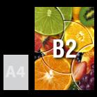 Plakat B2, kolor