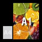 Plakat A1, kolor