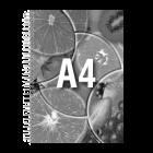 Prezentacja A4 cz-b, 32 strony