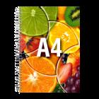 Prezentacja A4, 24 strony, kolor