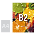 Tablica (plansza) B2, pianka kartonowa