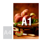 Tablica (plansza) A1, spienione PCV