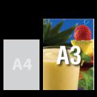 Wydruk kolorowy A3+