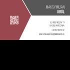 Wizytówka QR pozioma 90x50 mm (wzór nr 2)